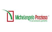 michelangelo-prezioso-infis